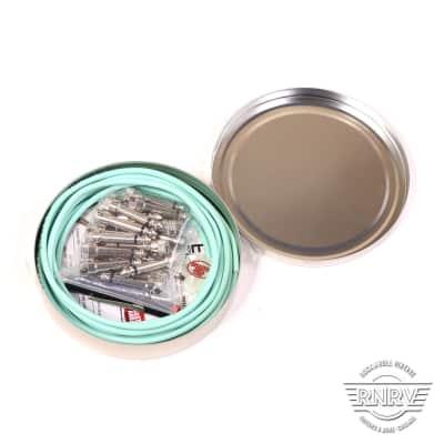 Disaster Area EVO 1010 Solderless Kit 10 Plugs 10ft Cable - Seafoam