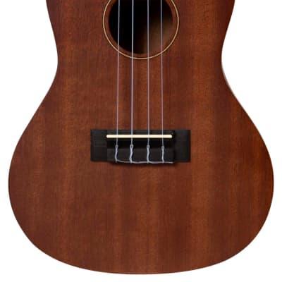 de salvo UKMC ukulele CONCERT MOGANO elettrificato for sale