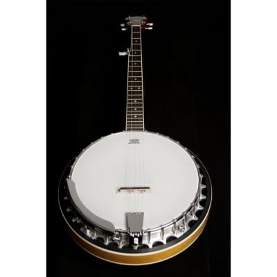 Washburn B9-WSH Americana Series Cast Aluminum Tone Ring  5-string Resonator Banjo for sale