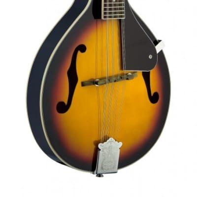 Bluegrass Mandolin w/ basswood top