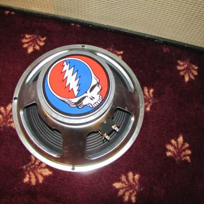 """12"""" guitar speaker,  Steal your face"""