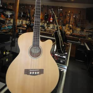 Trinity River Acoustic bass Satin for sale