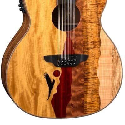 Luna VISTA EAGLE 12 Acoustic-Electric Guitar, Multi for sale