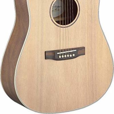 James Neligan Asyla series 4/4 dreadnought acoustic guitar w/ solid spruce top