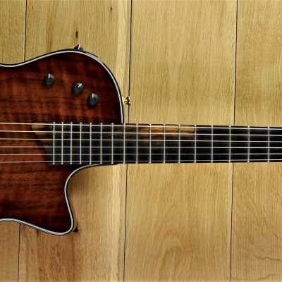 Taylor Custom T5Z  #8999 ~ Secondhand for sale