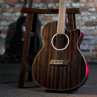 Washburn Deep Forest Ebony Ace Stripe Wood Mahogany Neck 6-String Acoustic-Electric, DFEACE-U for sale