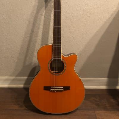 Ibanez AEG10NE-TNG-14-02 Nylon String Acoustic Guitar w/ Roadrunner Case for sale