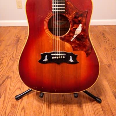 Gibson Dove 1973 Cherry Sunburst for sale