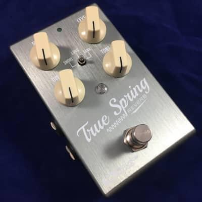 Source Audio True Spring (Reverb & Tremolo)