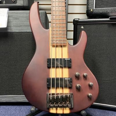 LTD D-5 NS D Series 5-String Bass in Natural Satin for sale
