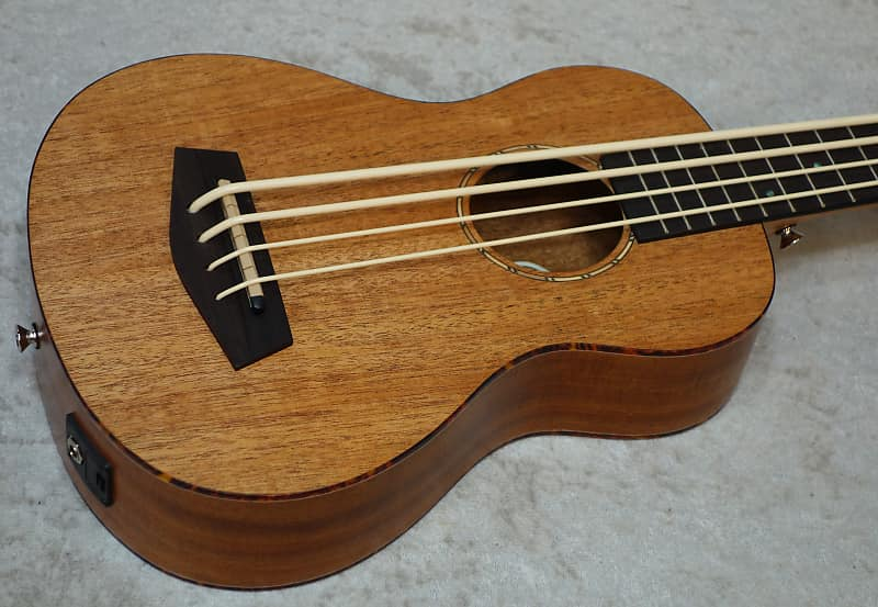 Donner DUB-1 acoustic electric ukulele bass | CAPITOL GUITARS