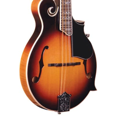 Gold Tone GM-35 Entry Level F-Style Mandolin for sale