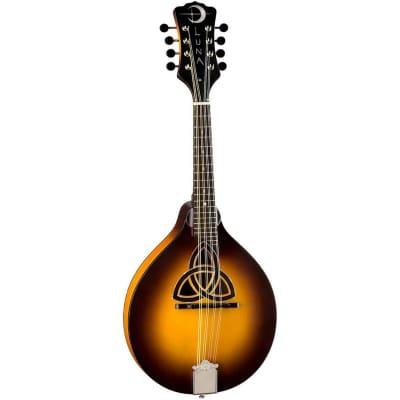 Luna Trinity A-Style Mandolin in Tobacco Burst for sale