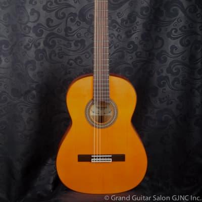 Raimundo Flamenco Guitar, Model 126 Blanca for sale