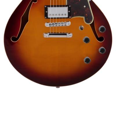 DAngelico DAPSSHNBCSCBKRSIG 6 String Semi-Hollow-Body Electric Guitar