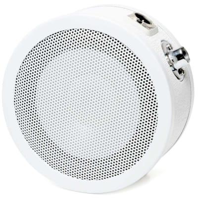 Solomon LoFReQ Sub Dynamic Low Frequency Microphone - White