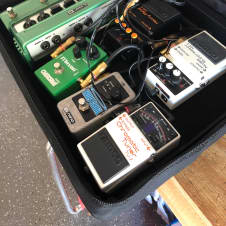 Pedal Board, Powered, HM-2, od 808, TU-2, NS-2, DL-6, Holy Grail Reverb