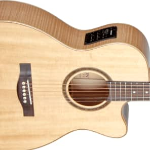 Teton STG130FMCENT Spruce/Flamed Maple Grand Concert with Electronics Natural