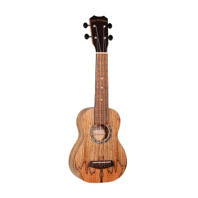 Islander   MAS-4  Traditional soprano ukulele with spalted maple top