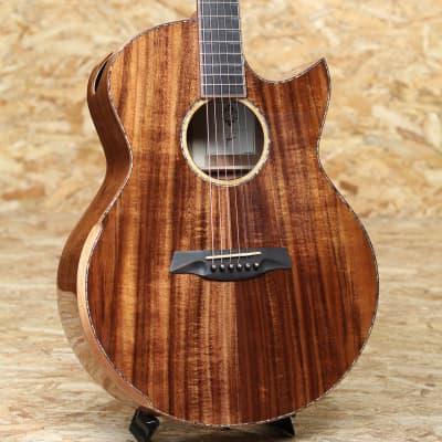 Maestro Guitars RAFFLES KO CSB K for sale