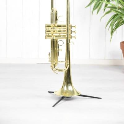 First Brass trompet gelakt 35244