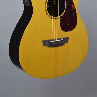 RainSong V-OM1000NSX Vintage Series Spruce & Carbon Fiber Guitar for sale