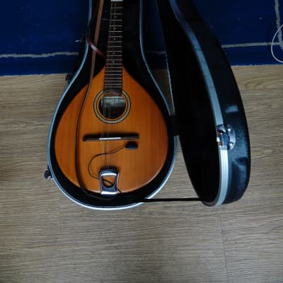 Paul Hathway M1 natural for sale