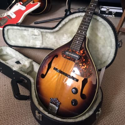 Aria Electric Mandolin AM200E + Case for sale