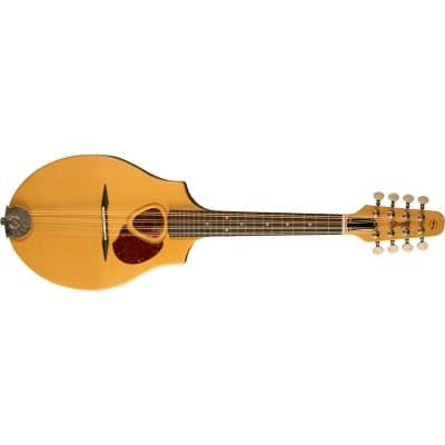 Seagull S8 Mandolin, Natural for sale