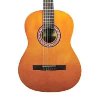 Tanara Tanara Classical Guitar TSC100NT Natural for sale