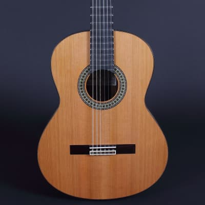 Altamira N300 Classical Guitar for sale