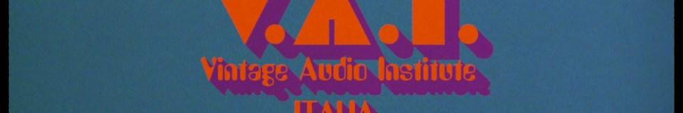 Vintage Audio Institute Italia