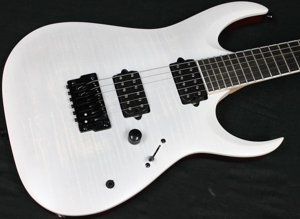 Ibanez Iron Label RG Series RGAIX6FM Electric Guitar Flat | Reverb