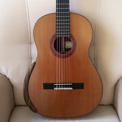 Martin Okenica - op. 24 / 2019, José Luis Romanillos (1932*) model, cedar top, oil varnish for sale