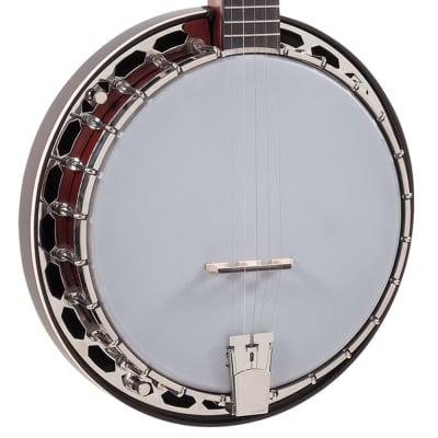 NEW Recording King RKH-05 Dirty 30's Resonator Banjo for sale