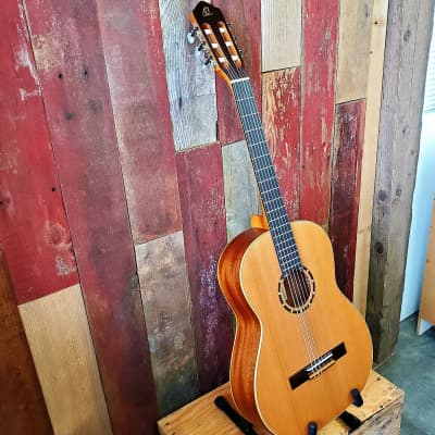 Ortega Guitars R131SN Family Series Classical with Deluxe Soft-Case - Full Size