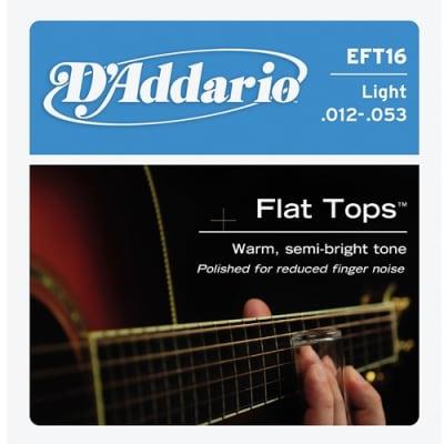 D'Addario EFT16 Flat Top Phos Bronze Light Acoustic Guitar Strings, .012 - .053
