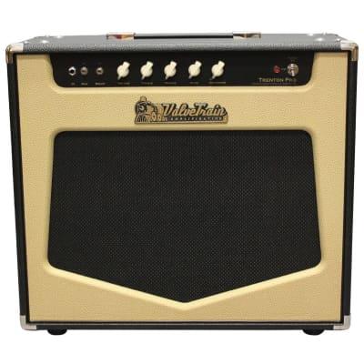 ValveTrain Trenton Pro Guitar Combo Amplifier (27 Watts, 1x12