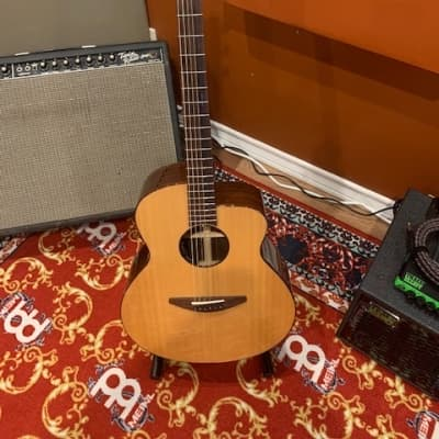 Baden Acoustic/Electric  Clear Laquer for sale