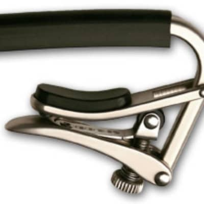 SHUBB Standard Capo - Polished Nickel Finish - Steel String for sale