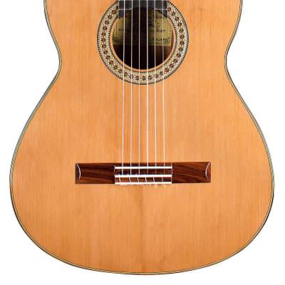German Vazquez Rubio Divina 2020 Classical Guitar Cedar/Palo Escrito for sale