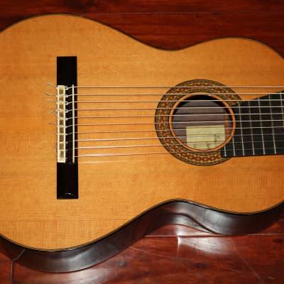 Eric Sahlin  Ten String Classical for sale