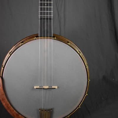 Nechville Atlantis Open-Back Banjo for sale