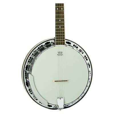 Washburn Americana Series B11K-A 5 String Banjo Natural for sale