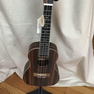 Sound Smith ukulele concert ssu-e24 2019 ebony for sale