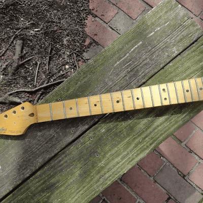 Fender Standard Stratocaster Left-Handed Neck 1983 - 1984