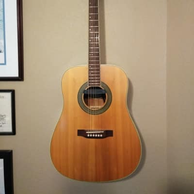 Mr. Potato acoustic electric guitar with Fishman Neo-D for sale