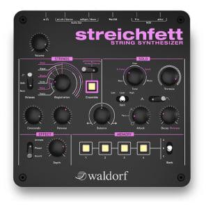 Waldorf Streichfett Tabletop String Synthesizer