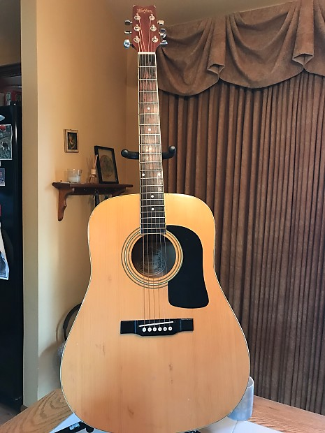 washburn d8 dreadnaught acoustic the home recording place reverb. Black Bedroom Furniture Sets. Home Design Ideas