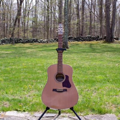 Seagull Coastline Momentum Dreadnought w/ Fishman Electronics  (includes HSC!)